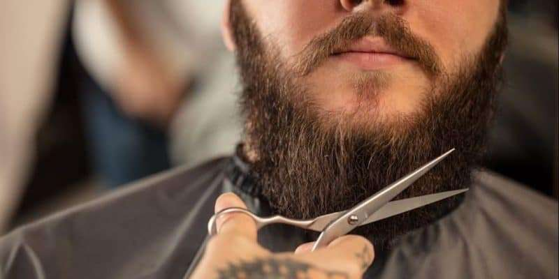 Best Beard Scissors